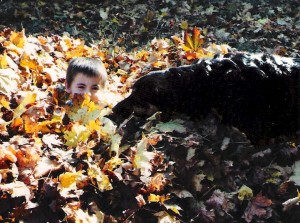 Boy and dog playing in leaves