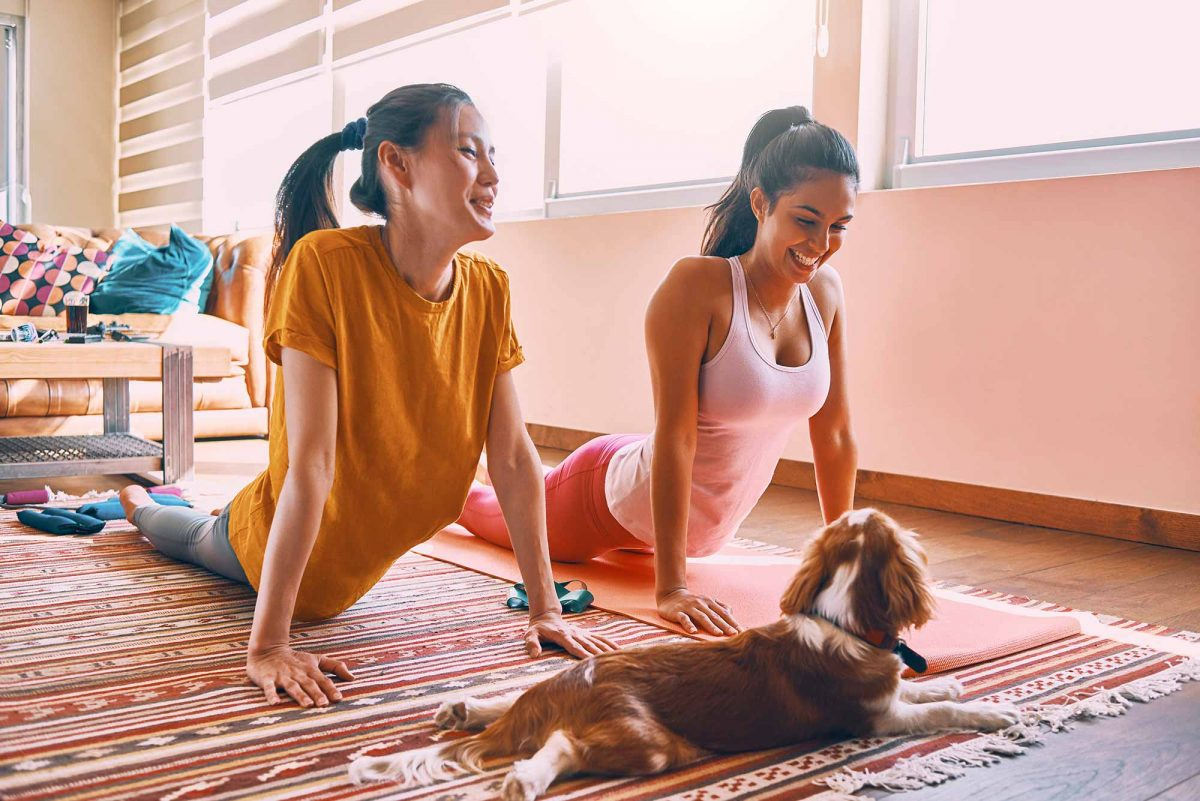 Pet yoga at home is a great way to get in some pet exercise