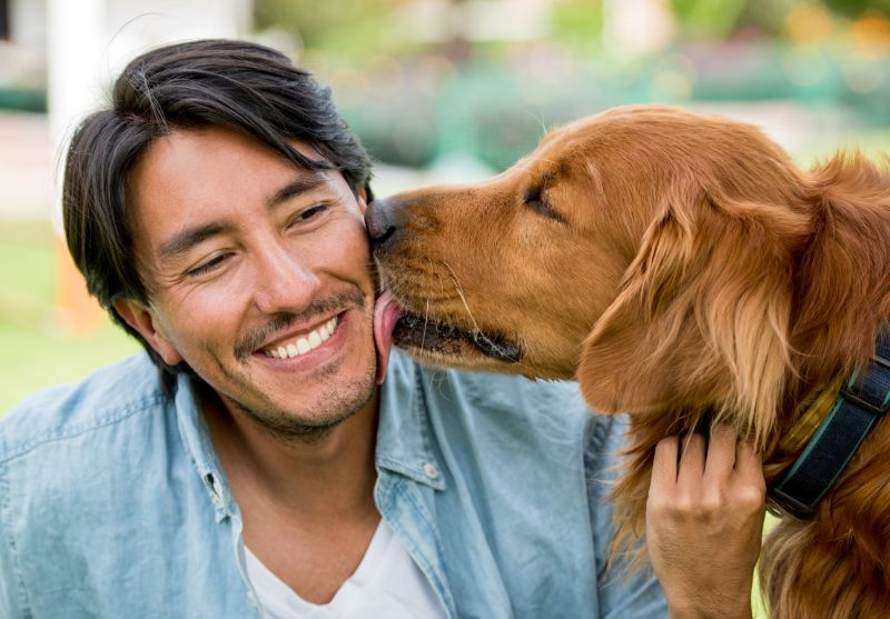 Dog licking smiling man