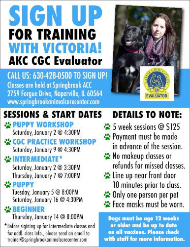 New Training Classes