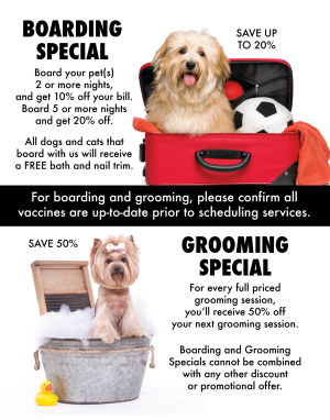 Naperville IL Pet Grooming